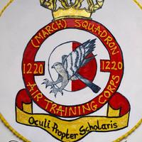 Handpainted Air Cadets RAF squadron cake