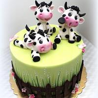 Veselé kravičky