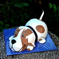 Cake dog for a boy´s 1st birthday