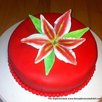 Red velvet Passion by Sophisticated