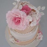 cakeSophia
