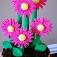 Flower Pot Cake!