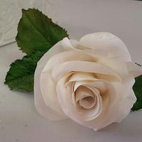 Soft White gumpaste Rose
