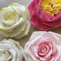 Sugar peony and roses