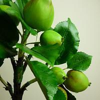Gumpaste apples