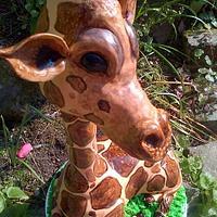 Giraffe:)