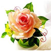 Rose GuGi