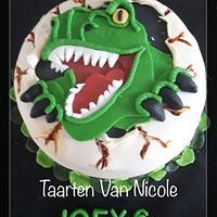taarten Van Nicole