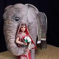 bride and elephant