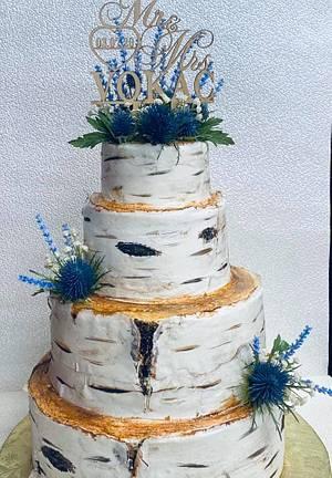 Birch Cake - Cake by PeggyT