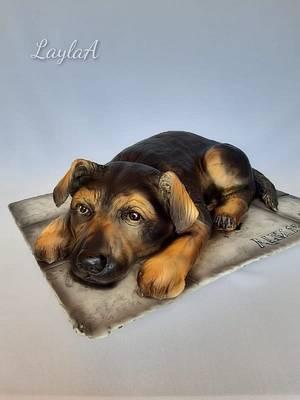 3D dog - Cake by Layla A