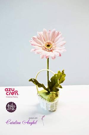 Sugar Gerbera Flower  - Cake by Catalina Anghel azúcar'arte