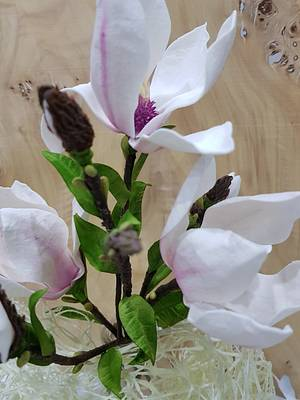 Magnolia - Cake by Sladky svet