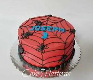 Spiderman Birthday Cake - Cake by Donna Tokazowski- Cake Hatteras, Hatteras N.C.