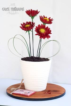 Gerbera flower pot cake. - Cake by Caketherapie