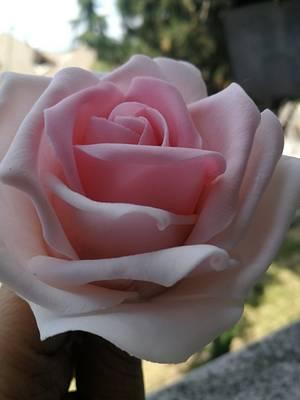 Sugar roses - Cake by myriamcofano