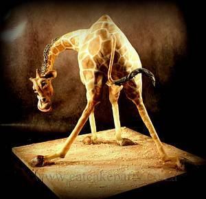 Jack's Giraffe cake - Cake by Dorothy Klerck