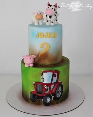Farm animals - Cake by Cakes by Evička