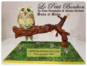 Bubo el búho 🦉😊 - Cake by LE PETIT BONBON