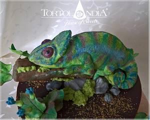 Chameleon cake - Cake by Tortolandia