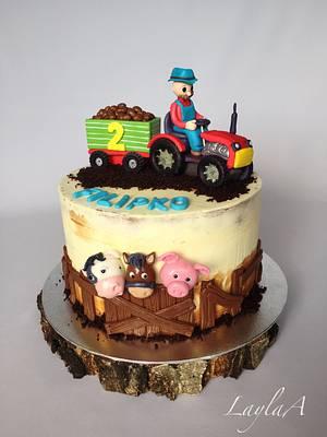 Cute Farmer cake - Cake by Layla A