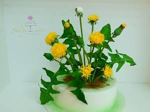 Dandelion - Cake by Sladky svet