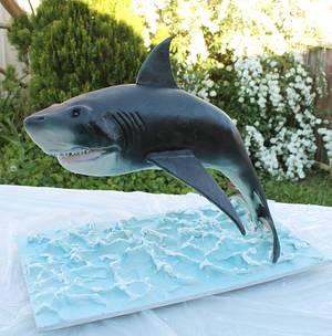Shark cake - Cake by Kake Krumbs