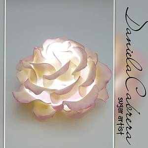 Illuminate your cakes with roses!! - Cake by daniela cabrera