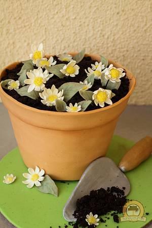 Flower Pot Cake - Cake by Anne Jones