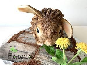 Nutella the pygmy rabbit - Cake by Agnes Havan-tortadecor.hu