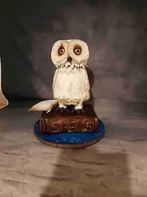 Hedwig moving owl cake - Cake by MySugarFairyCakes
