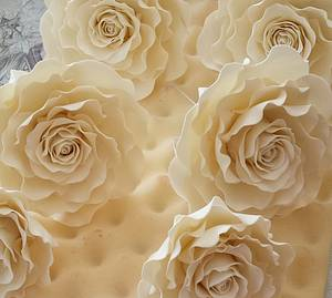 Ivory roses xx - Cake by My Darlin Cakes