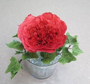 David Austin rose, sugar flower MBalaska - Cake by MBalaska