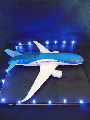 Boeing 787 Dreamliner cake - Cake by For the love of cake (Laylah Moore)