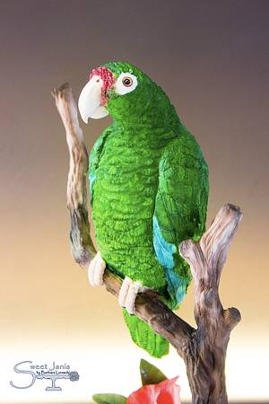 Puerto Rican Parrot - Bakers Unite to fight Collaboration - Cake by Sweet Janis
