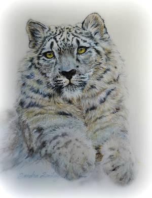 Snow Leopard - Spectacular Pakistan  - Cake by Sandra Smiley