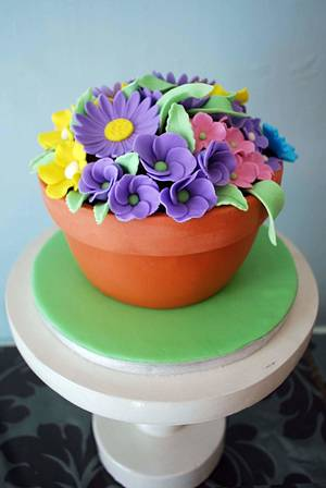 Flower pot cake - Cake by Iced Cakery
