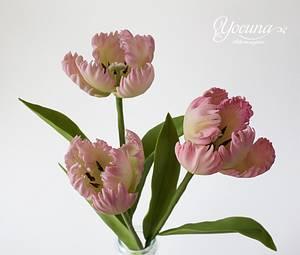 Tulipán Loro - Parrot Tulips - Cake by Yolanda Cueto - Yocuna Floral Artist