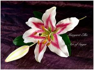Lily love - Cake by Margaret Ellis - Art of Sugar