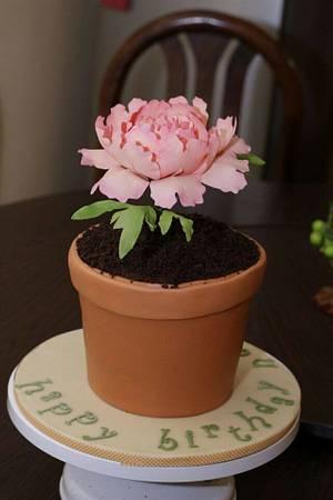 Flower Pot Birthday Cake - Cake by Mini's Sugarcraft