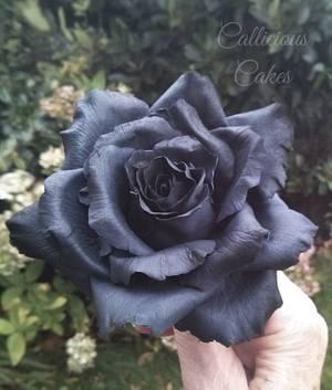 Black Sugar  Rose - Cake by Calli Creations