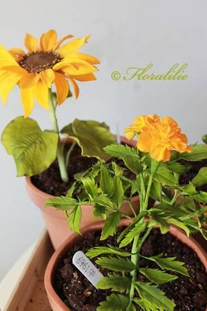 Flower Pot Cake - Cake by Floralilie