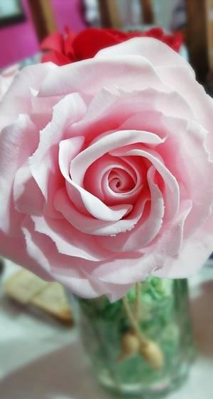 Roses  - Cake by Sofia veliz