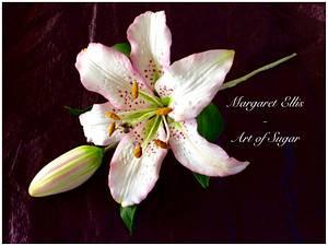 Lily my love - Cake by Margaret Ellis - Art of Sugar