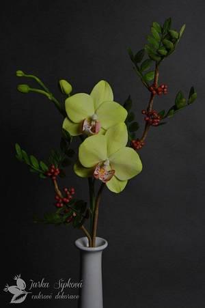 Orchid - Cake by JarkaSipkova
