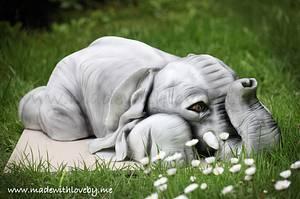 Baby Elephant Cake 'Dumbo'  - Cake by Hannah