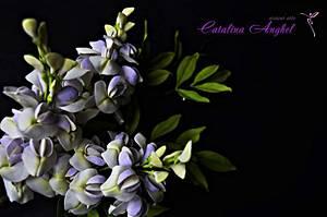 free formed sugar flowers #Wisteria - Cake by Catalina Anghel azúcar'arte