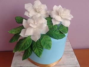 Gardenias cake - Cake by Mariya Gechekova