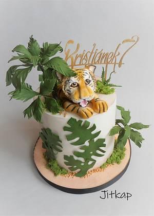 Tiger cake - Cake by Jitkap