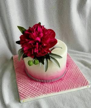 Cyclamen poeny - Cake by Anka